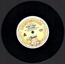 EC The FERRETS Don't Fall In Love / Lies Australian 45 rpm Record