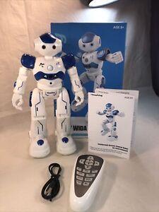 Hi-Tech Wireless Remote Control Robot Kids RC Robot Toy Senses Gesture, Sings,