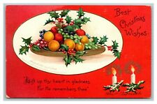 1907 Ellen H Clapsaddle Embossed Christmas Postcard Fruit Holly Candles pc2594
