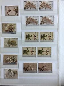 TCStamps 12X pages of Guyana ORCHID FLOWER Postage Stamps + Souvenir SHEETS #386