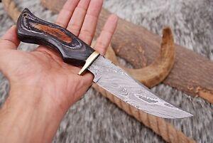 "10""inch CUSTOM HAND FORGED DAMASCUS Steel Hunting Knife Fix Blade Knife+ Sheath"