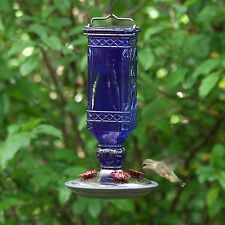 Hummingbird Feeder Cobalt Blue Antique Bottle Nectar Bird Wildlife Outdoor Perky
