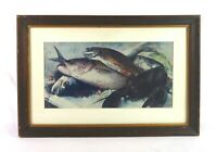 Vintage Framed Lithograph Print of New England Cod Fish Lobster Food Still Life