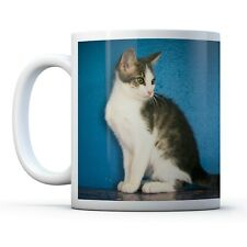 Adorable Kitten - Drinks Mug Cup Kitchen Birthday Office Fun Gift #15991