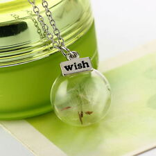 Women Chic Real Dandelion Seeds Lucky Glass Wishing Bottle Pendant Necklace Hot