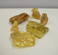 Amber Natural Polished Amber 6 Chunks Light Dark Amber Baltic 400 grams