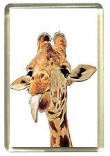 Cheeky Giraffe Fridge Magnet