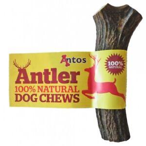 Antos Wild Deer Antler 100% Natural Healthy Dog Chews & Treats Large