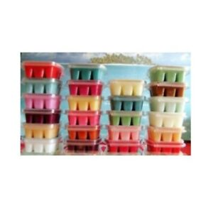 💖 Scentsy bars wax melts brand new - Spring summer Waxes *READY TO POST*