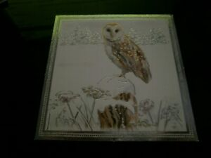 1 Hunkydory printed/foiled Cardstock Topper- Owl Design-Asst'd col-New