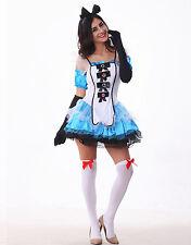 Alice in Wonderland Costume, Fancy Dress Complete - size Sml (AU 8 - 10)