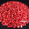 1/2lb  Beautiful Tumbled Natural Red Coral Bulk Specimen  Healing Dyed