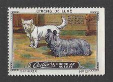 1931 Nestle Cailler Kohler Dog Art Card West Highland White Skye Terrier Dog