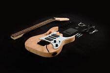 DIY Electric Guitar Kit Project Bolt-On Neck Solid Mahogany Monkey Grip egk830d