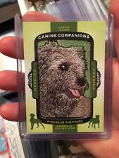 2017 Ud Goodwin Champions Canine Companions Patch Pyrenean Shepherd Herding Cc74