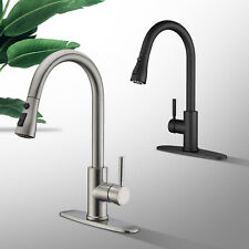 Single Handle High Arc Kitchen Sink Faucet with Pull Out Sprayer Single Level