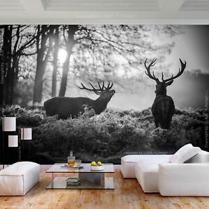Hirsch VLIES Fototapete Tapete XXL Wanddeko Wohnzimmer 10Motiv Modern Wald Natur