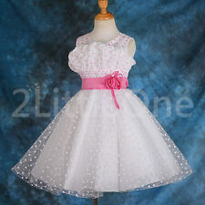 Pearls Beaded Embossed Flower Girl Dresses Wedding Pageant Party Size 2T-10 #143