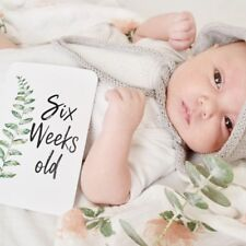 Baby Milestone Cards, Wreath Milestone Cards, Monthly Photo Props, New Baby Gift