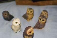 6 Pot Bellys Owls Mint