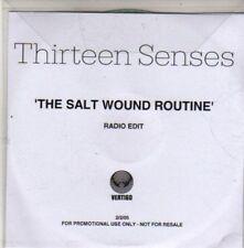 (CB874) Thirteen Senses, The Salt Wound Routine - 2005 DJ CD