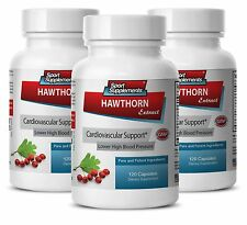 Garlic Supplement - Hawthorn Leaf Extract 665mg- Improves Blood Flow 3B