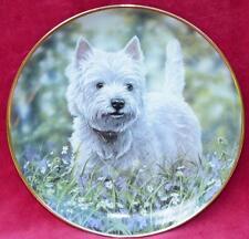 Danbury Mint/ Lt Ed Plate:Paul Doyle - Westies