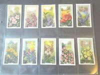 1939 Gallaher  WILD  FLOWERS a set of 48 cards Tobacco Cigarette card garden
