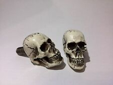 Skull Zombie License Plate Bolts for Custom Car Motorcycle Hot Street Rat Rod