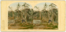 Stéréo, USA, View on the Catskill Mountains Vintage stereo card - Tirage album
