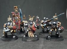 warhammer 40k Pro painted Terminator/paladins Grey knights