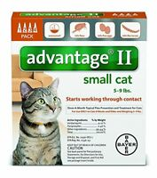 Bayer Advantage II For Small Cats, Orange 5-9lbs 4Pk. FREE Shipping! USA version