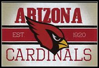 ARIZONA CARDINALS VINTAGE TEAM LOGO FOOTBALL NFL DECAL STICKER~BOGO 25% OFF