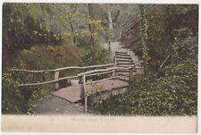 Shanklin Chine, Isle of Wight F.G.O. Stuart 157 Postcard B800