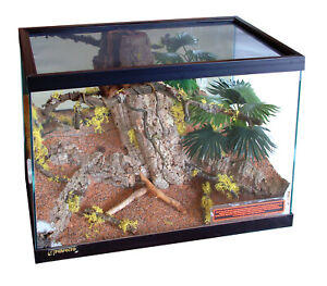 Perfecto Fully Furnished Vivarium With Desert Floor Size 40 x 20 x 40cms