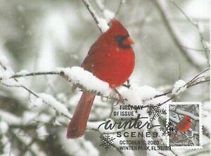 Northern Cardinal Bird Winter Scenes Fauna USA FDC Maximum Card Scott #5533