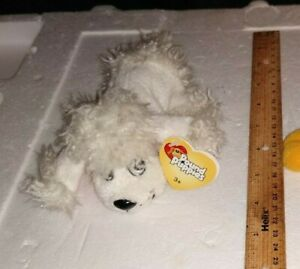 "2004 Mattel Pound Puppies Dog 6"" Plush Stuffed Animal White Poodle NWT"