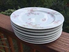 (7) Haviland Limoges Dinner Plates SCHLEIGER 29A - Pink Floral