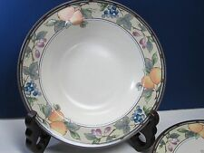 "Garden Harvest Mikasa Soup Cereal Bowl Rimmed Intaglio CAC29 Fruit 9 3/4"" Multi"