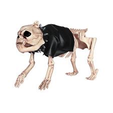 CRAZY BONEZ Skeleton Dog Dress Up Kit-Faux Leather Jacket & Stud Collar