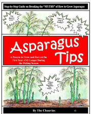 "How to grow Asparagus- ""Asparagus Tips"" - growing method for better production"