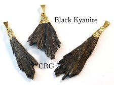 Gold Plated Black Kyanite Crystal Fan Pendant (FN10BT) SPECIAL