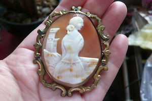 Victorian Carved Tricolour Shell Cameo and Gold Gilt Metal Brooch