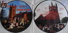 Picture-LP WITCHFINDER GENERAL Friends Of Hell - BOBV499PD - RSD 2017 - MINT