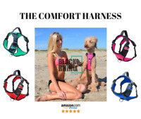 Black Rhino - The Comfort Dog Harness with Mesh Padded Vest Small - Large Dogs