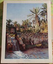 1955 Oasis de Tozeur Tunisie art print document pédagogique affiche scolaire