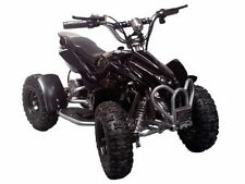 Electric 2002-Now Ride - On Quad Bikes