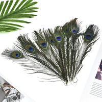 10Pcs Natural Peacock Tail Feathers Wedding Festival Party DIY Home Decoration