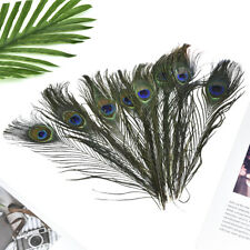 10Pcs Wedding Natural Peacock Tail Feathers Festival Party DIY Home Decoration