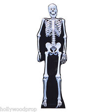 SKELETON HALLOWEEN DECORATIONS LIFESIZE CARDBOARD STANDUP STANDEE CUTOUT POSTER